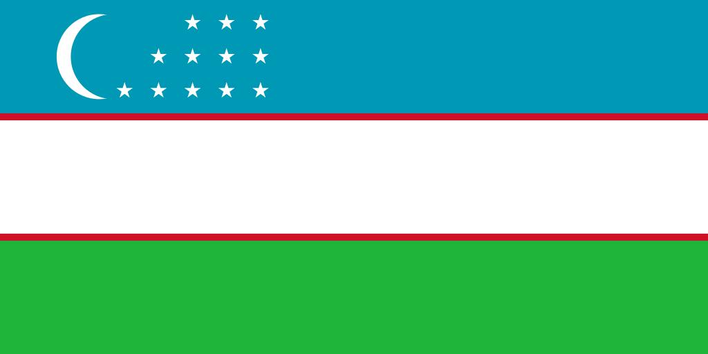 Özbekçe - Türkçe Yazılı Tercüme (Boşluksuz 1000 Karakter)