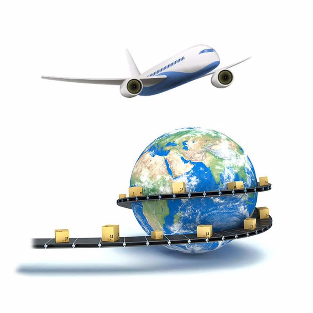 Uluslararası Uçak Taşıma 1 Yıllık Üyelik Paketi